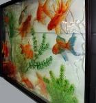 Золотые рыбки_2