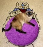 Мебель для животных_6